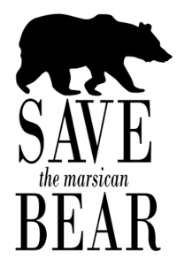 Save thye Marsican Bear
